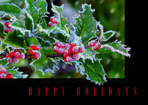 Frosty Fringe Holiday Cards